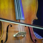 Top 10 Best Cello Bows Reviews in 2021
