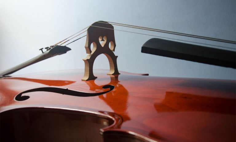 Top 10 Best Cello Strings Reviews in 2021