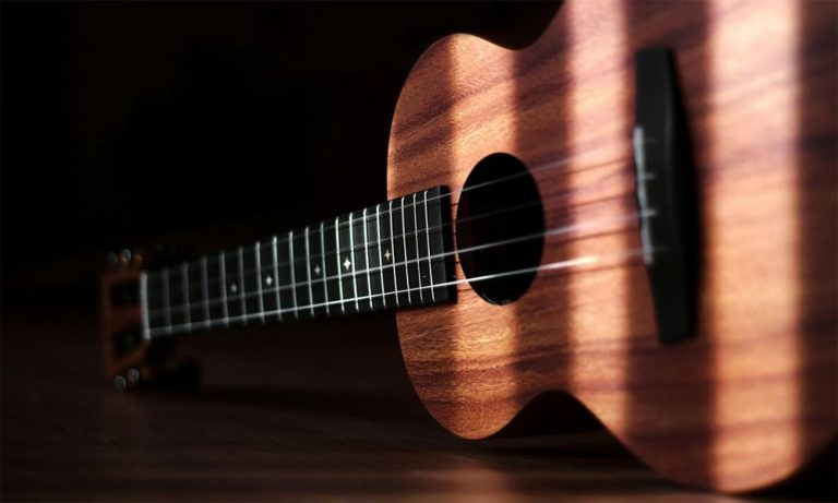 Top 10 Best Acoustic Bass Guitar Under $500 Reviews in 2021