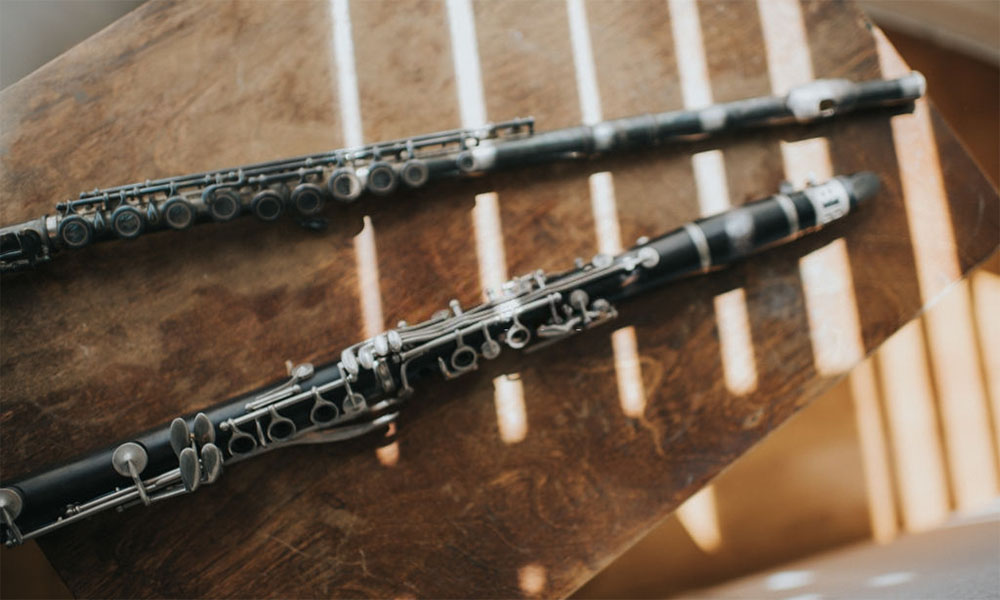 Best Clarinet Reeds For Advanced Players