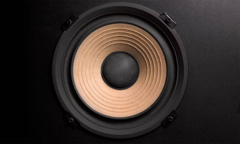 Top 10 Best Subwoofer For Music Reviews in 2021