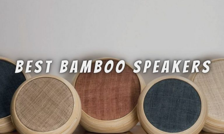 11 Best Bamboo Speakers of 2021 Reviews & Buying Guide